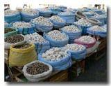 乾燥ジャガイモ売り