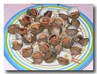 ホーイ・クレーン 赤貝