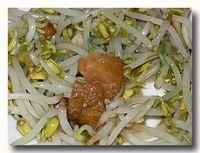 トォゲ・カー・イカン・アシン もやしと干し魚の炒め物 ズーム