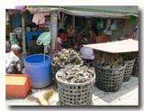 牡蠣の殻を剥いているひとたち