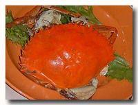 コールドクラブ 茹でスリランカ蟹