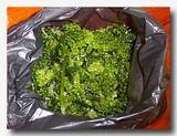 ラモン/ラトゥ/ラウィ-ラウィ ラウトアングール 海ぶどうを市場で買った