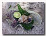 シャコ貝の肝